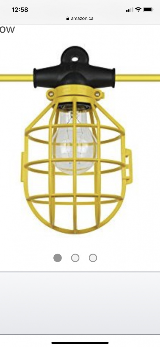 WHat are you guys using for landscape lighting?-68966883-4067-4957-a43f-685b956da616.jpg
