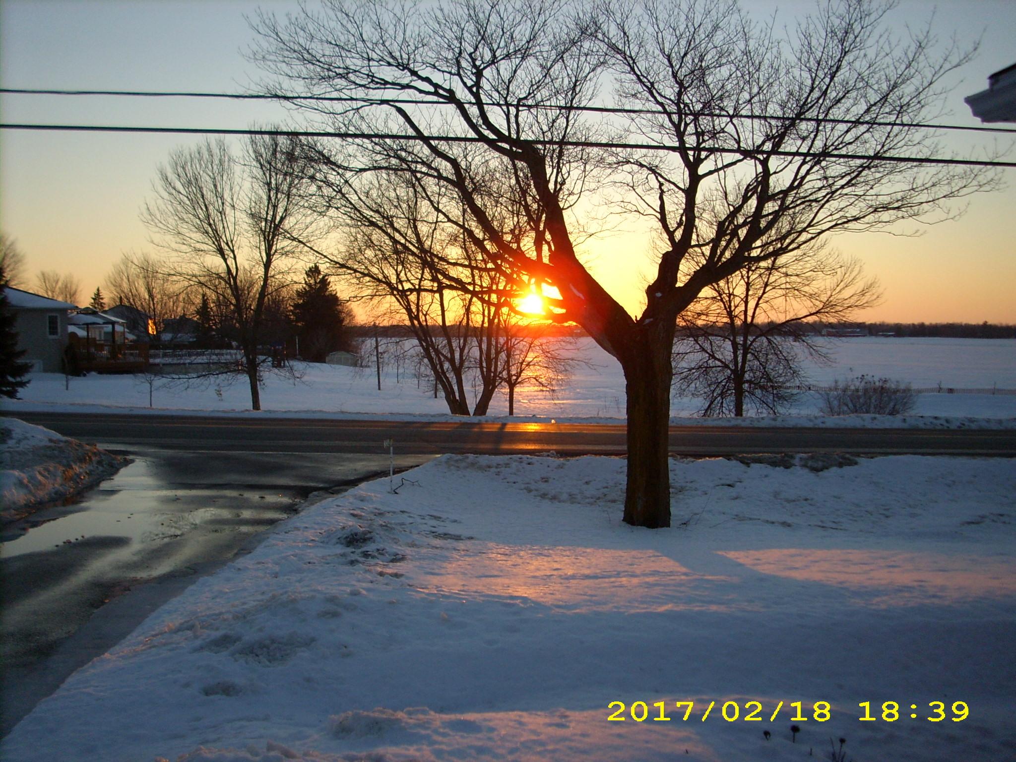 Loving this weather-feb2017-023.jpg