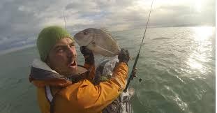 Name:  fish.jpg Views: 137 Size:  6.6 KB