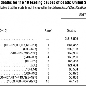 Table C  causes of deaths in the USA 2016+2017.png